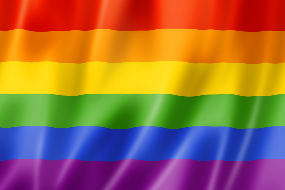 Often mistaken for the City of Cusco flag, the LGBT rainbow flag has been around since 1978, going through many revisions. The colors represent different aspects that are important in life. In order, red represents life, orange is healing, yellow is sunlight, green is nature, blue is serenity, and purple represents spirit. Hot pink (which represents sexuality) was removed from the flag in 1979 due to the lack of fabric availability.  Photo from Google Searches.